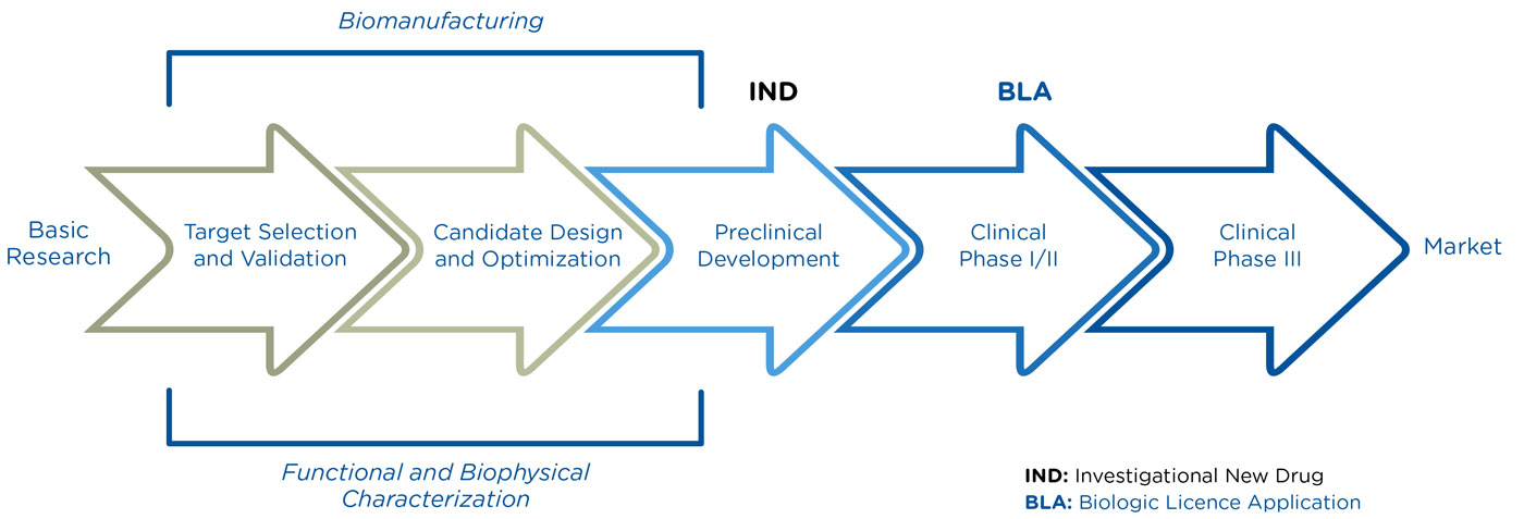 role of biophysical medication and the Transcranial magnetic stimulation  (medication, brain lesions or  supply to the coil may also result in variations in the biophysical characteristics.