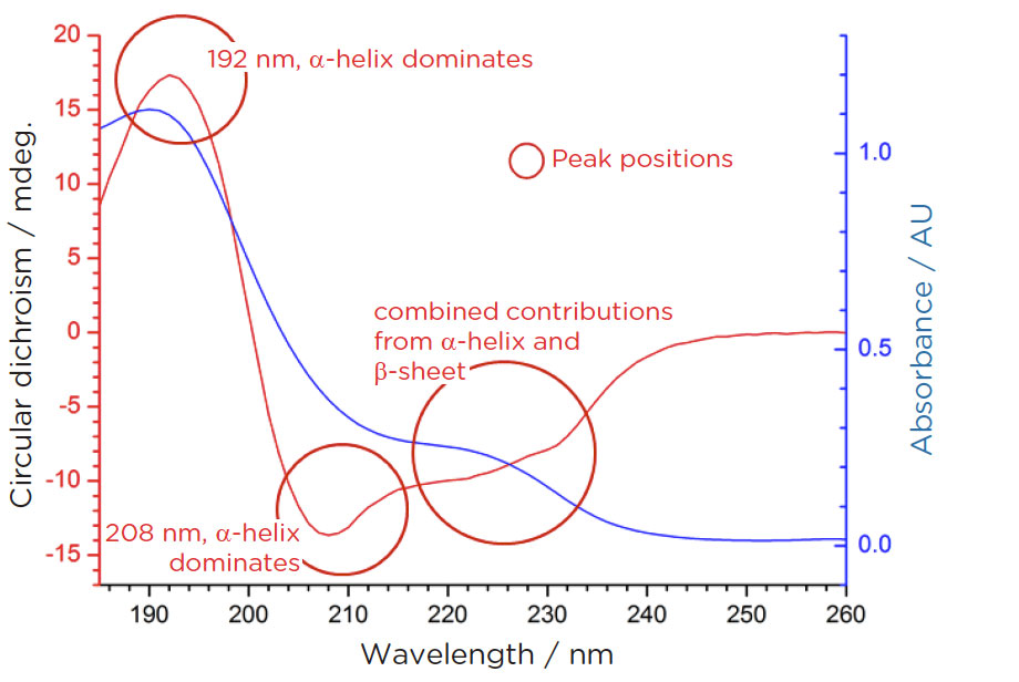 circular dichroism and secondary structure of Circular dichroism is known for the ultraviolet (uv) spectral region applications  are limited in most cases because of characteristic absorption bands are.